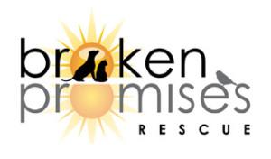Broken Promises Rescue